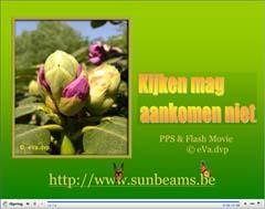 menu ppsx flash movie video